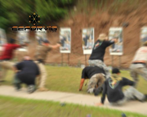 MAL USO DE LAS ARMAS